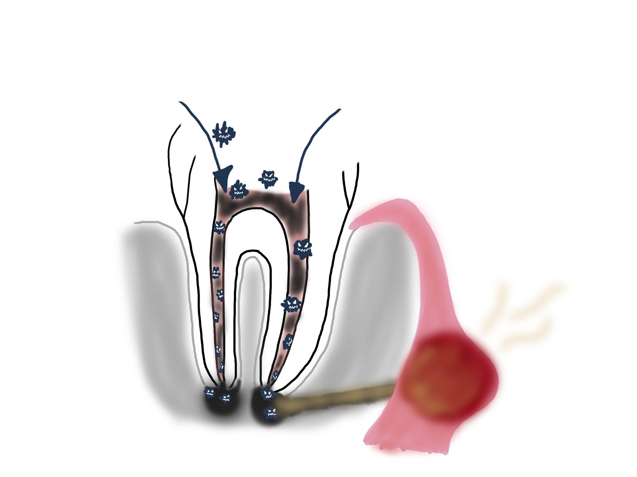 Image-nioi2